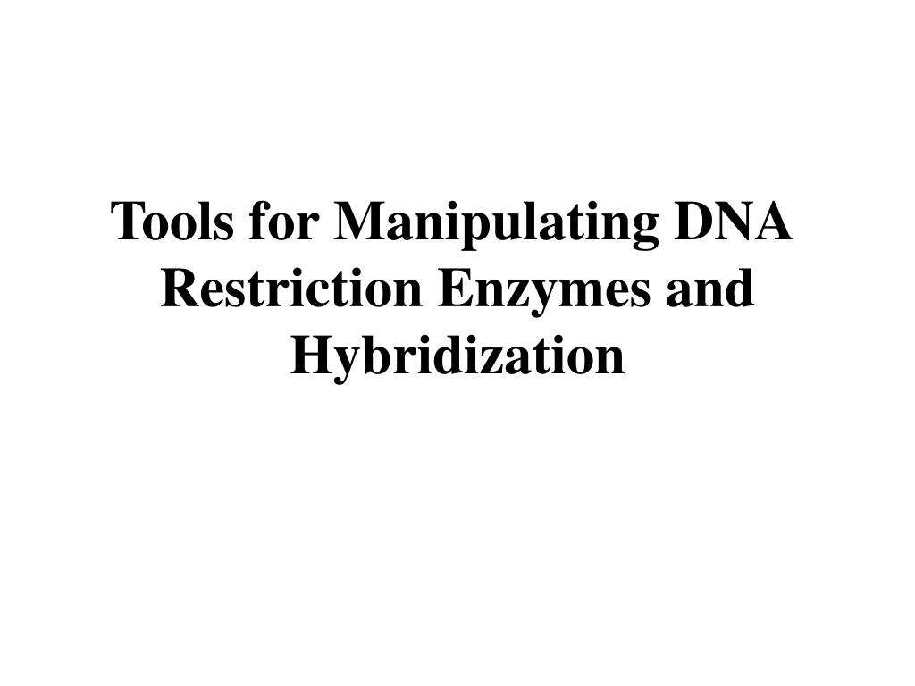 Tools for Manipulating DNA