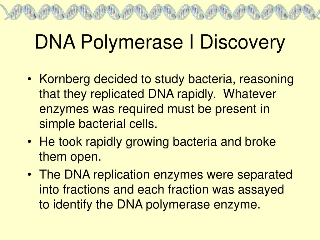DNA Polymerase I Discovery