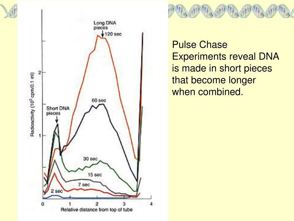 Pulse Chase