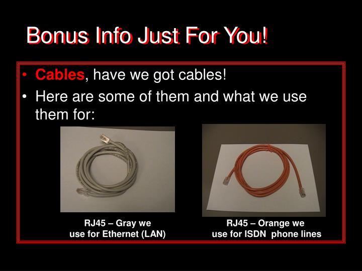 Bonus Info Just For You!
