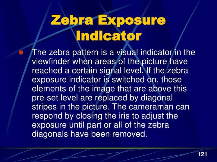 Zebra Exposure Indicator