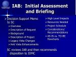 iab initial assessment and briefing