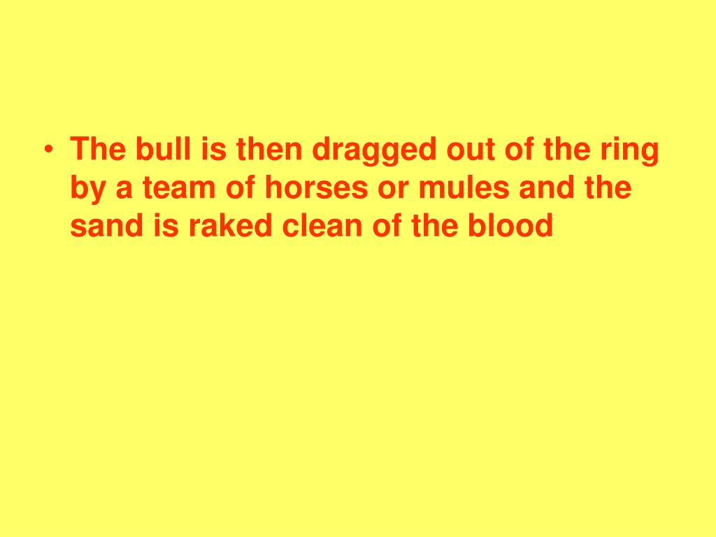 The bull is then dragged out of the ring by a team of horses or mules and the sand is raked clean of the blood