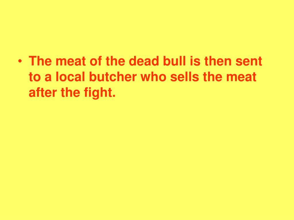 The meat of the dead bull is then sent to a local butcher who sells the meat after the fight.