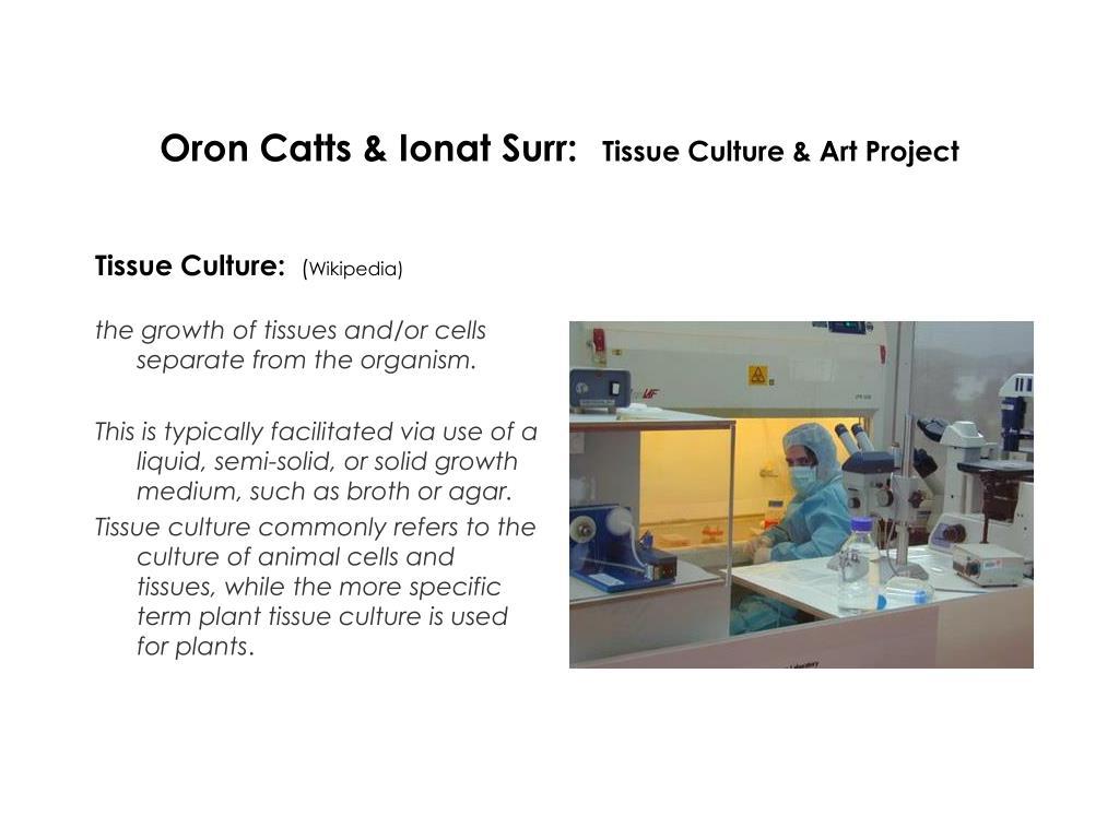 Oron Catts & Ionat Surr:
