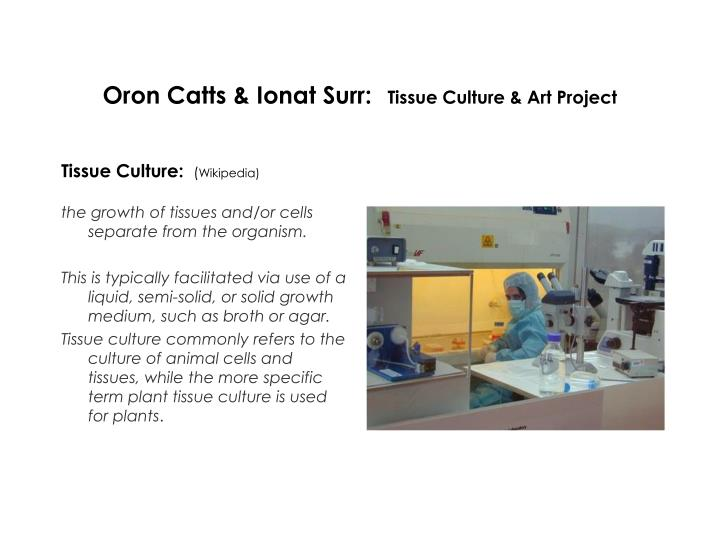 Oron catts ionat surr tissue culture art project