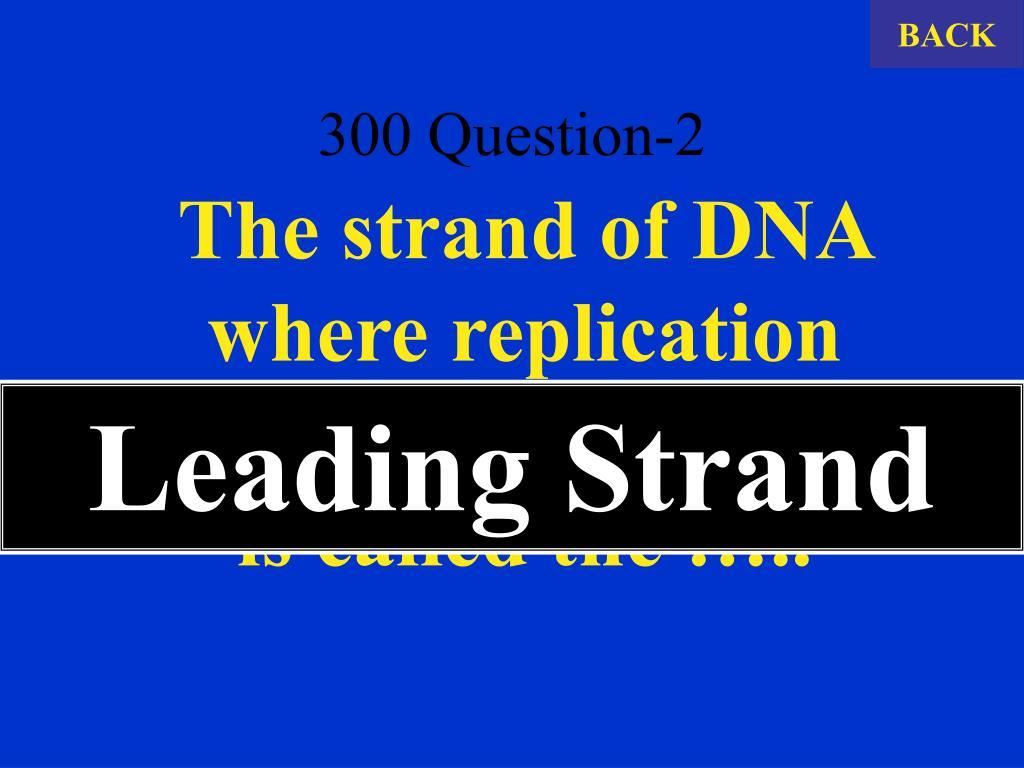 300 Question-2