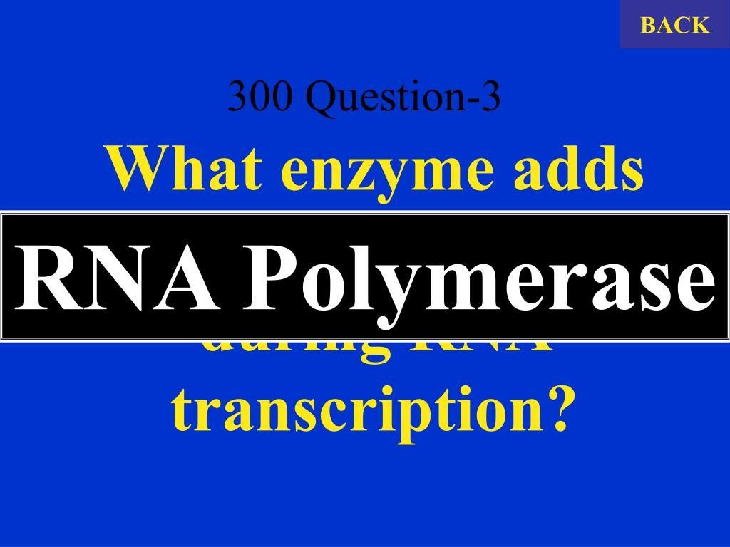 300 Question-3