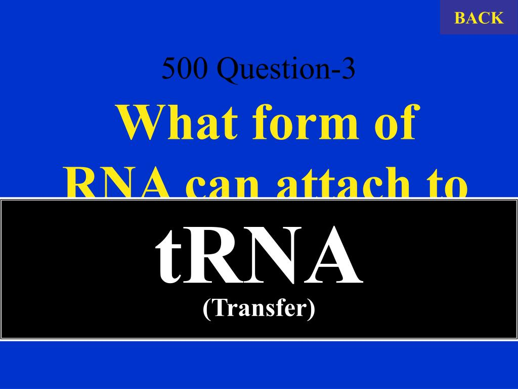 500 Question-3