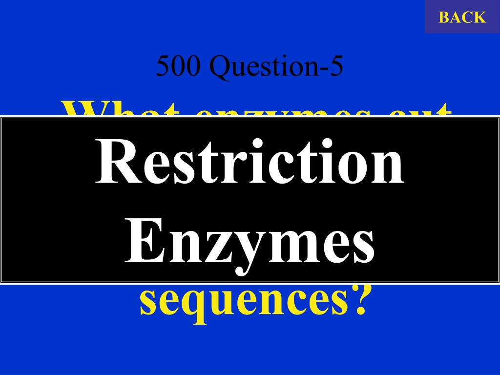 500 Question-5