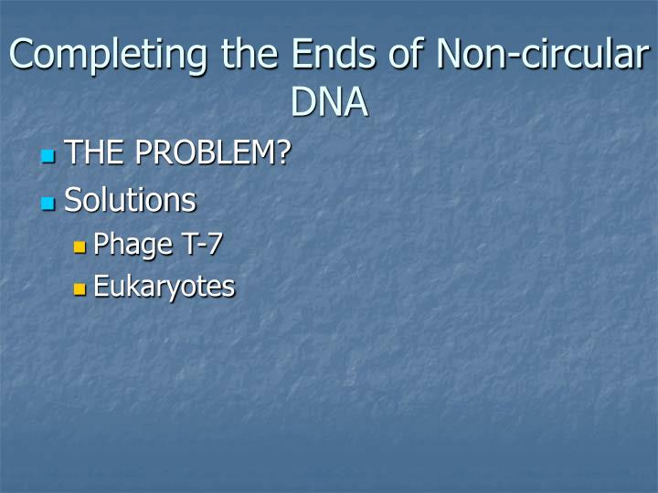 Completing the Ends of Non-circular DNA