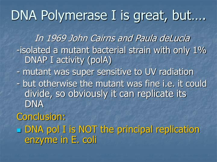 DNA Polymerase I is great, but….