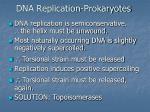 dna replication prokaryotes