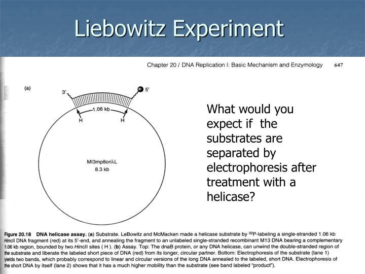 Liebowitz Experiment