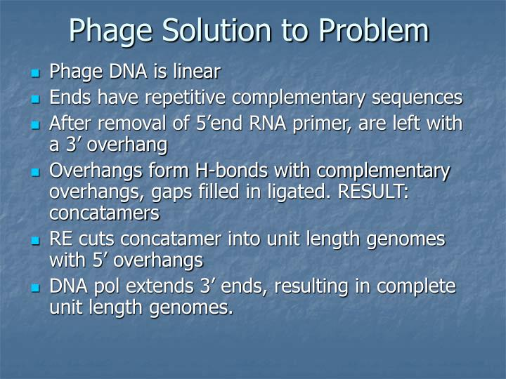Phage Solution to Problem