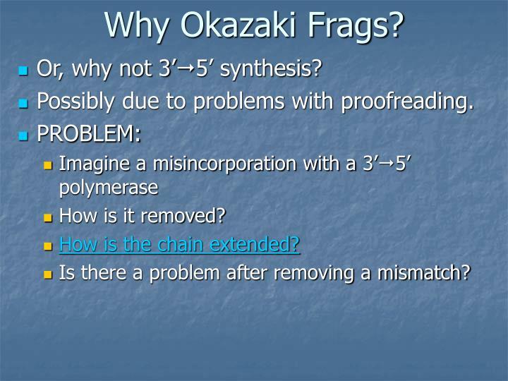 Why Okazaki Frags?