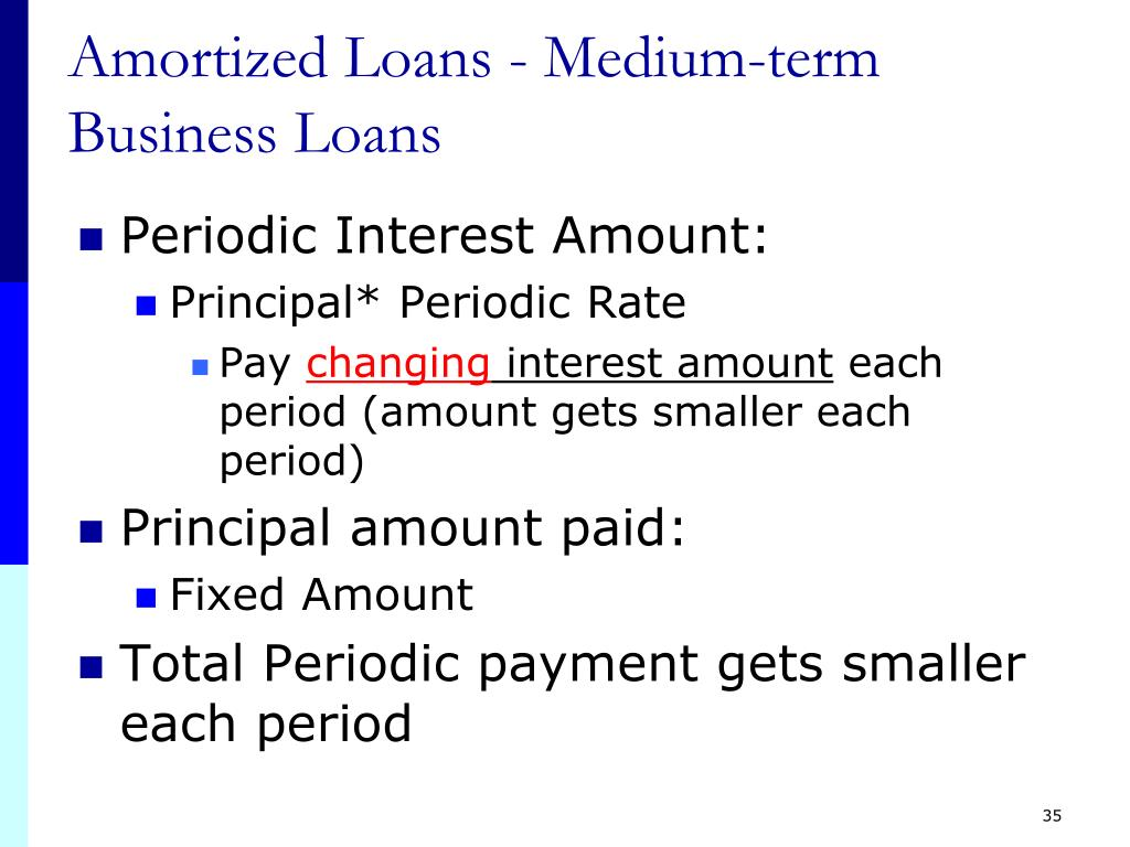 Amortized Loans - Medium-term Business Loans