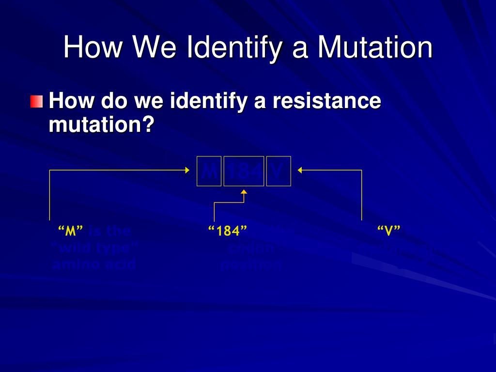 How We Identify a Mutation