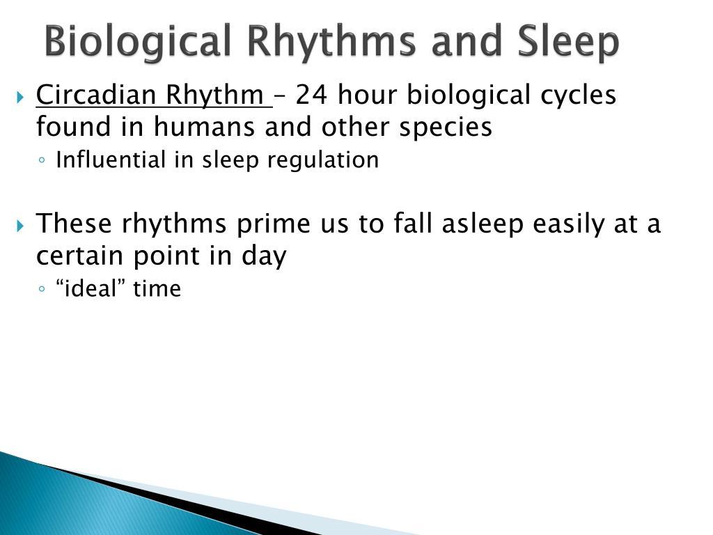 Biological Rhythms and Sleep