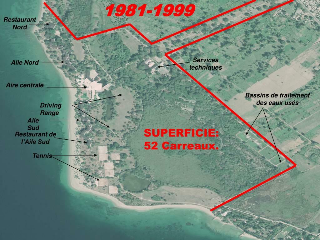 1981-1999