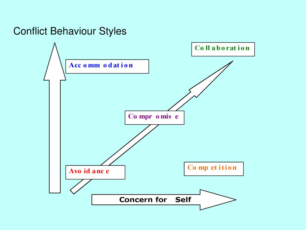 Conflict Behaviour Styles