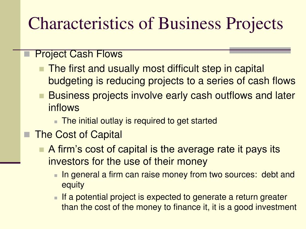 Characteristics of Business Projects
