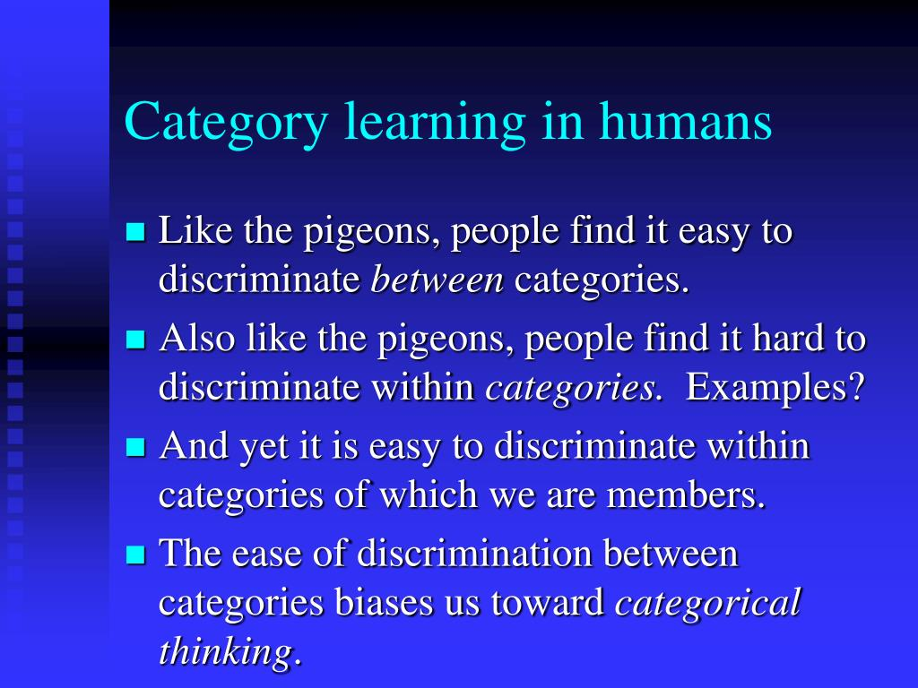 Category learning in humans