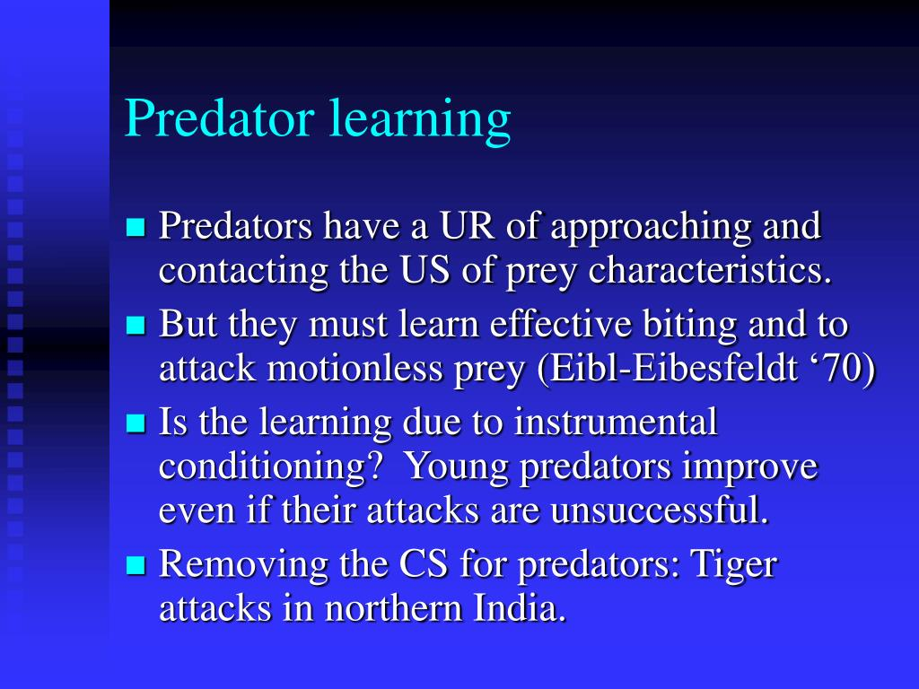 Predator learning