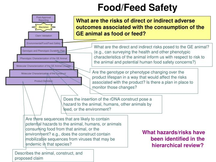Food feed safety