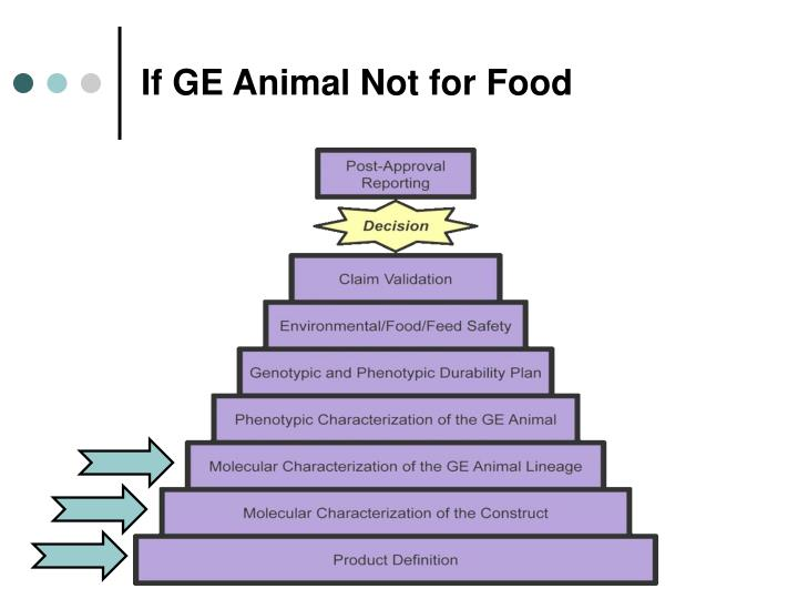 If ge animal not for food
