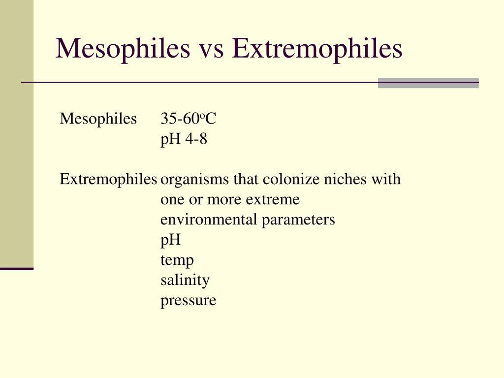 Mesophiles vs Extremophiles