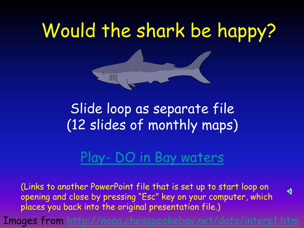 Would the shark be happy?