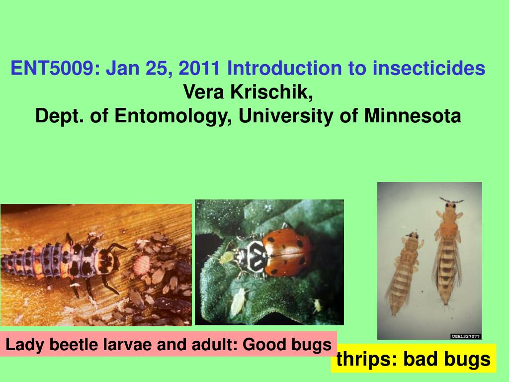 ENT5009: Jan 25, 2011 Introduction to insecticides