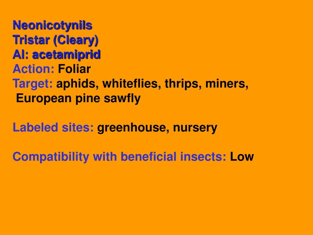 Neonicotynils