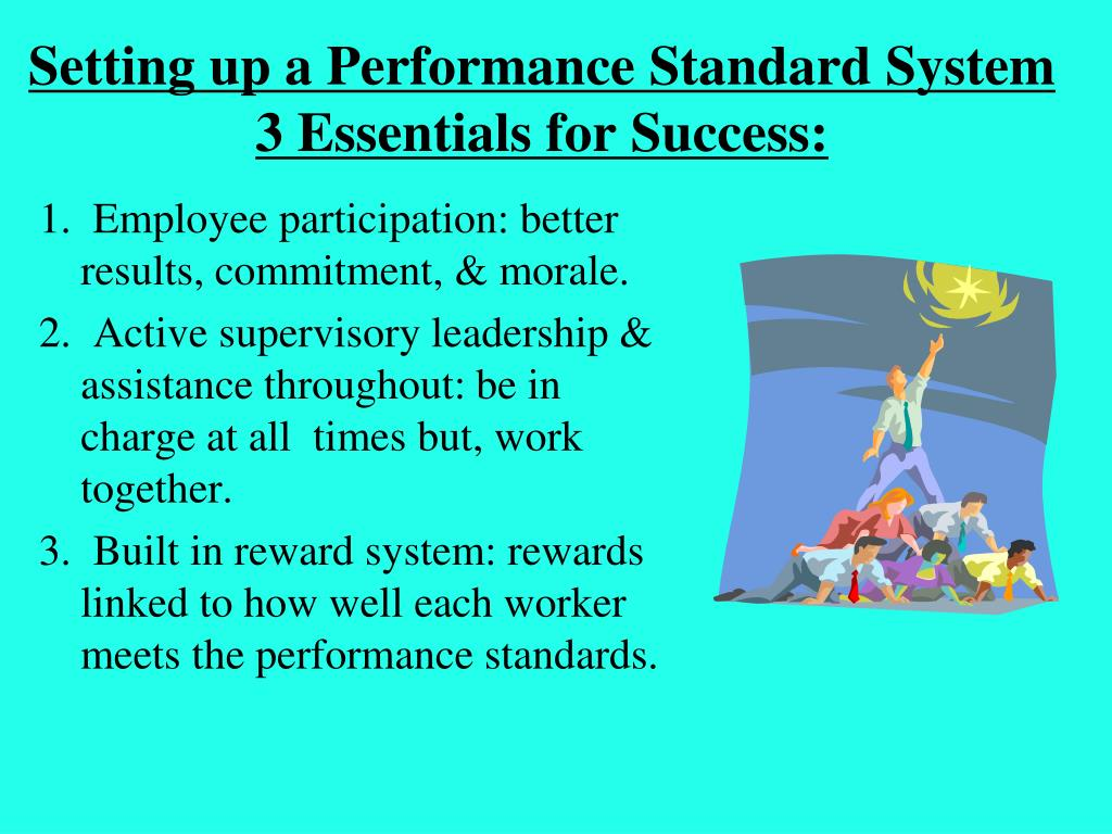 Setting up a Performance Standard System