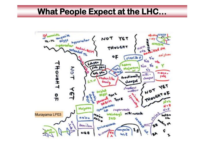What people expect at the lhc