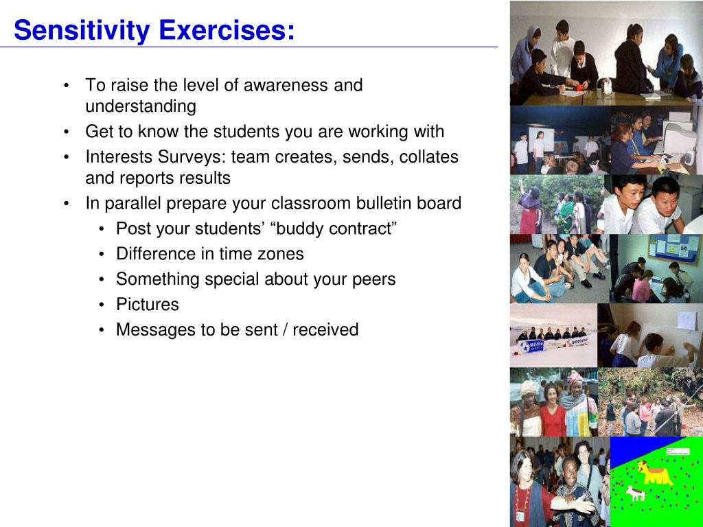 Sensitivity Exercises: