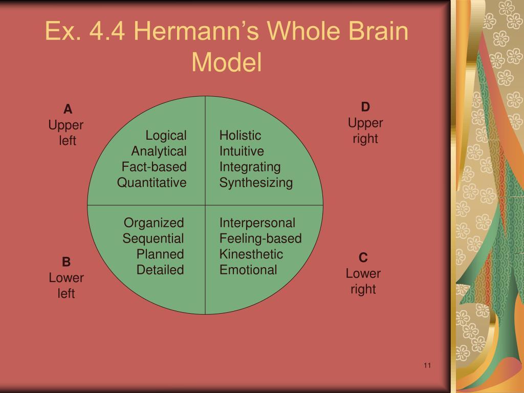 Ex. 4.4 Hermann's Whole Brain Model