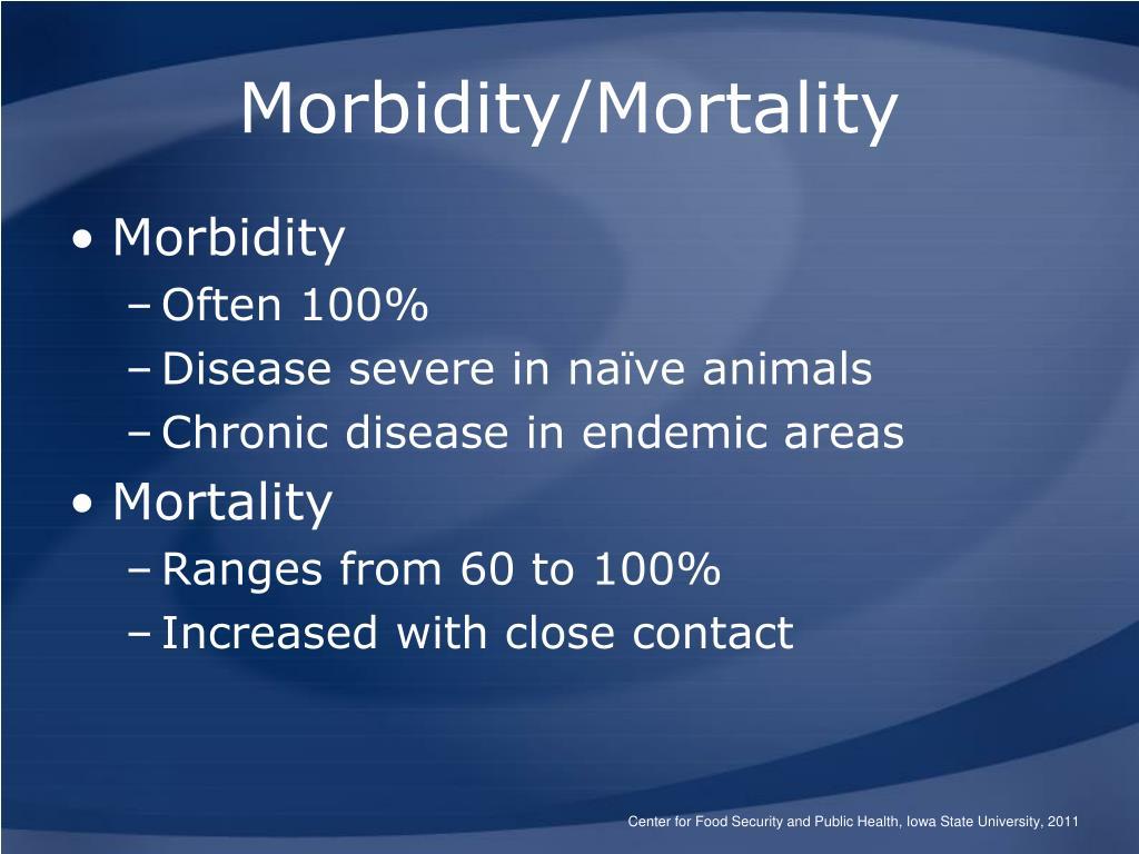 "health morbidity mortality Measuring maternal health: focus on maternal morbidity  of maternal morbidity: ""any health condition  focused on mortality to address maternal morbidity and."