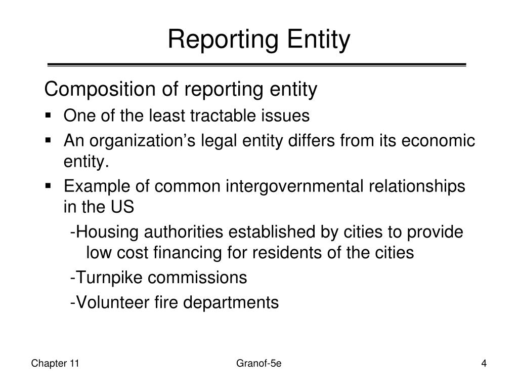 Reporting Entity