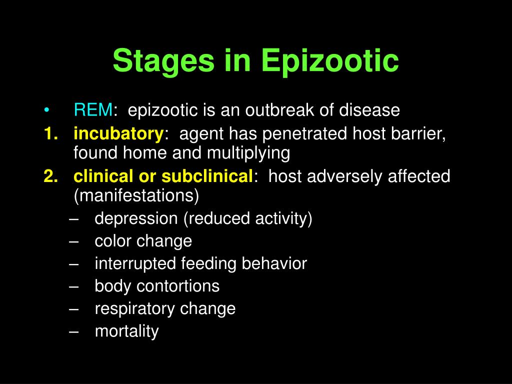 Stages in Epizootic