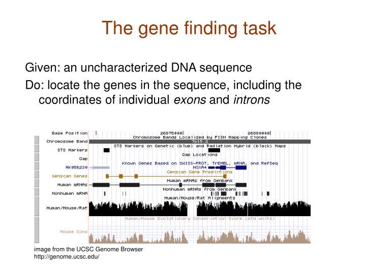 The gene finding task