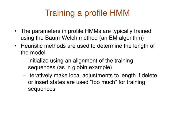 Training a profile HMM