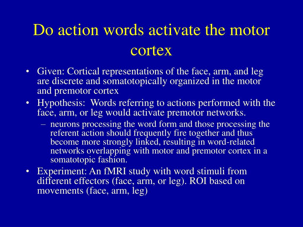 Do action words activate the motor cortex