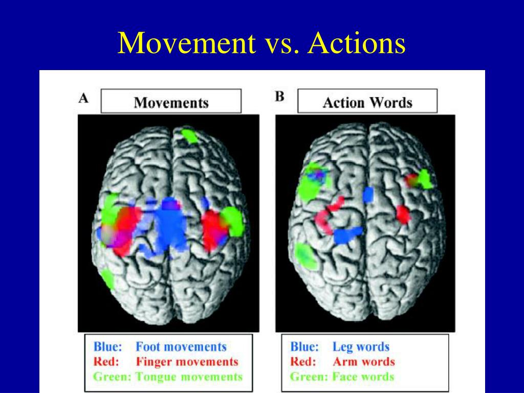 Movement vs. Actions
