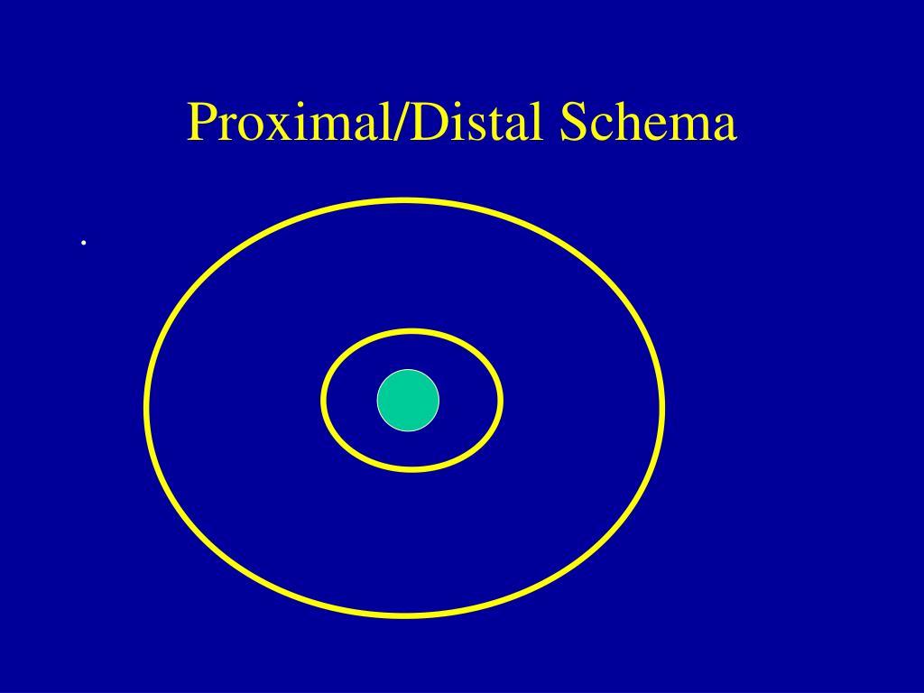 Proximal/Distal Schema