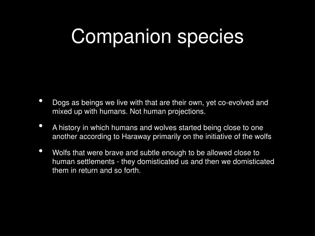 Companion species