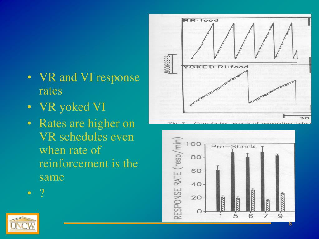VR and VI response rates