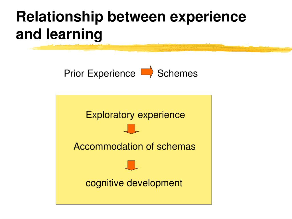 Relationship between experience and learning