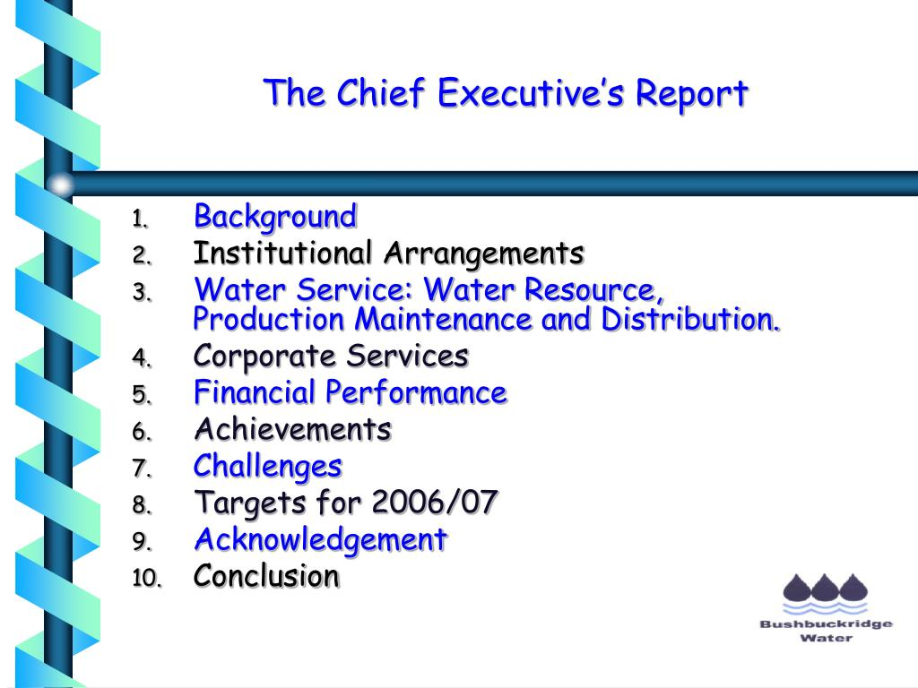 The Chief Executive's Report